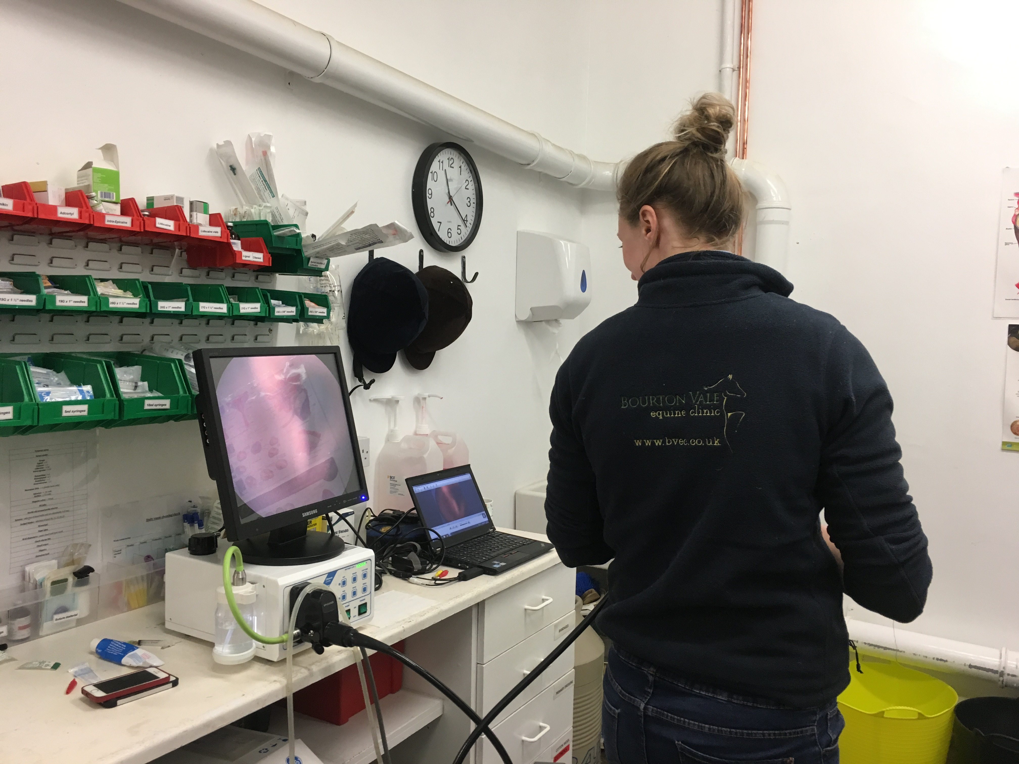 Equine Gastroscopy Day (5) with Millie Stewart-Wood DVM, MRCVS
